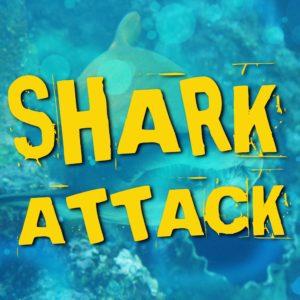 Ernys Gym Shark Attack